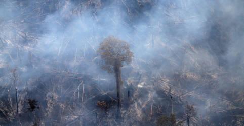 Placeholder - loading - Imagem da notícia Economia deve apresentar projeto para recursos e ações de proteção ambiental, diz Mourão