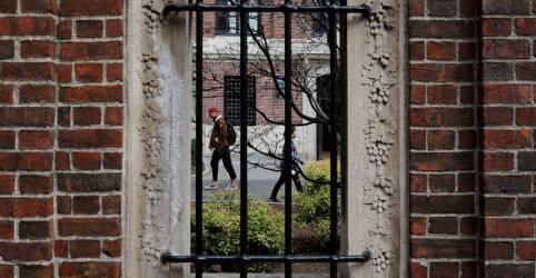 Placeholder - loading - Imagem da notícia Governo dos EUA surpreende e desiste de medida que barrava estudantes estrangeiros