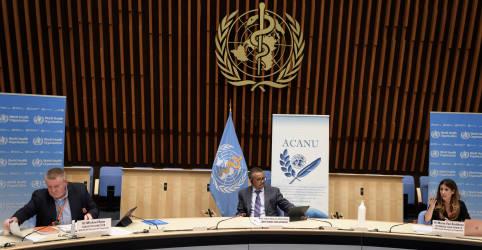 Placeholder - loading - Imagem da notícia OMS diz que viagens terão que recomeçar e faz apelo para países intensificarem combate a coronavírus