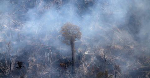 Placeholder - loading - Imagem da notícia Mesmo com atuação de militares, início de agosto traz sinais de disparada nas queimadas na Amazônia