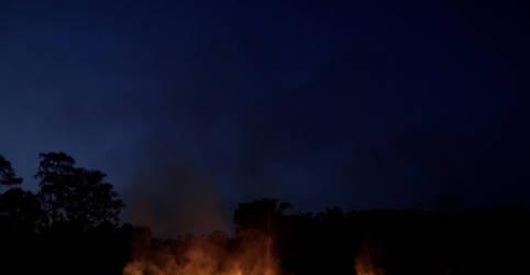 Placeholder - loading - Imagem da notícia Crescem temores com incêndios na Amazônia com aumento de focos no início de agosto