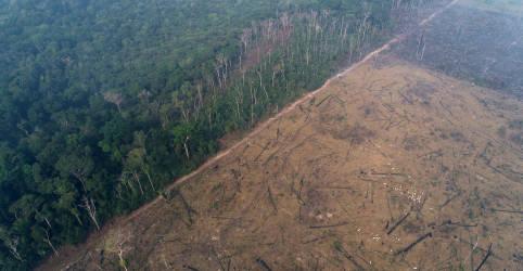 Placeholder - loading - Imagem da notícia Congresso tenta reverter imagem negativa do país na gestão ambiental e cobra demais Poderes
