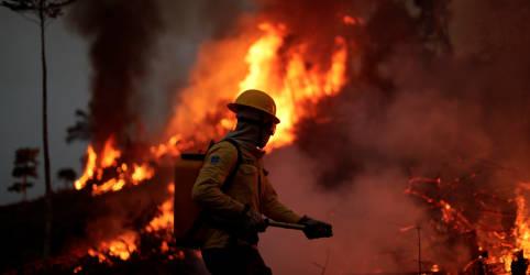 Placeholder - loading - Imagem da notícia Suor, fumaça e chamas: a rotina de combate a incêndios na Amazônia