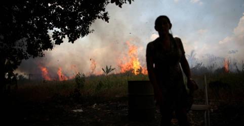 Placeholder - loading - Além de destruir floresta, incêndios na Amazônia ameaçam casas e plantações