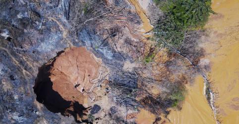 Placeholder - loading - PF faz operação contra garimpo na Amazônia e diz que sistema de satélite contratado é 'fundamental'