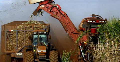 Placeholder - loading - Imagem da notícia Bolsonaro diz que EUA concederam cota maior para açúcar; setor minimiza
