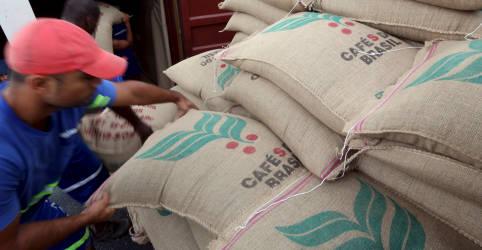 Placeholder - loading - Conab vê alta de 25% na safra de café do Brasil, mas volume abaixo de recorde
