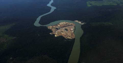 Placeholder - loading - Imagem da notícia Morte de peixes gera disputa entre hidrelétrica de Sinop e órgão ambiental de MT