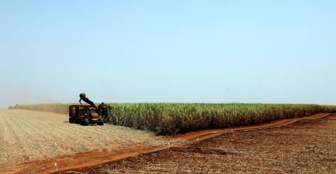 Placeholder - loading - Imagem da notícia Raízen adquire Biosev por R$3,6 bi e ações, amplia domínio em açúcar e etanol