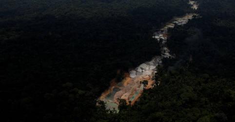 Placeholder - loading - Imagem da notícia Governo lança programa de adoção de parques nacionais para reduzir índices de desmatamento