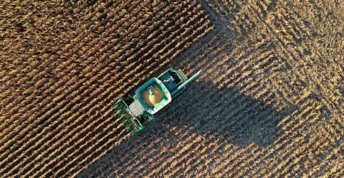 Placeholder - loading - Imagem da notícia Conab eleva previsão de soja do Brasil a 133,8 mi t; também vê recordes para milho