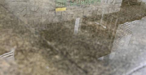 Placeholder - loading - CVM abre nova investigação sobre Petrobras após reclamação de investidor