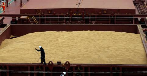 Placeholder - loading - Ritmo de exportação de soja no Brasil cresce 4% com avanço da colheita