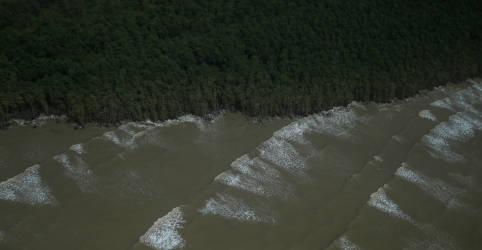 Placeholder - loading - Imagem da notícia Petrobras assumirá fatia da BP em blocos na Foz do Amazonas