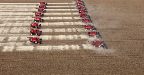 Placeholder - loading - Imagem da notícia Safra de soja do Brasil crescerá 8,6%; preço dispara mais de 90%, diz Conab