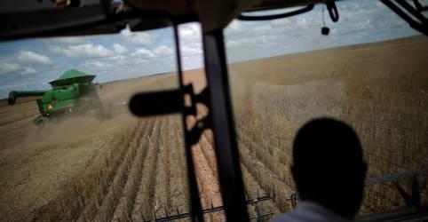 Placeholder - loading - Imagem da notícia Governo eleva projeção do valor da produção agropecuária a R$1,057 tri em 2021
