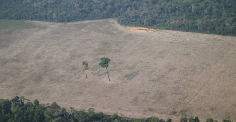 Placeholder - loading - Imagem da notícia Comissário da UE critica falta de ambição de compromisso climático do Brasil