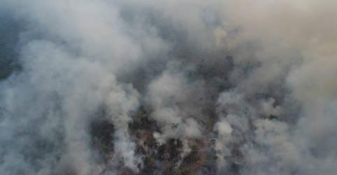 Placeholder - loading - Imagem da notícia PF deflagra operação contra incêndio, desmatamento ilegal e usurpação de terras da União no Amazonas