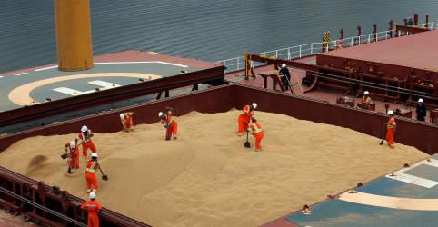 Placeholder - loading - Empresa de carnes Perdue leva 31 mil t de soja do Brasil para os EUA