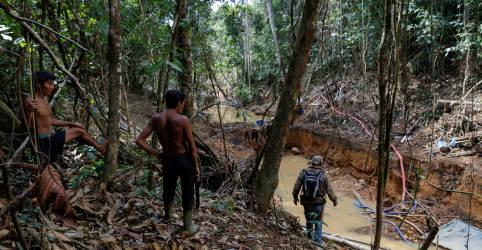 Placeholder - loading - Imagem da notícia Associação indígena pede ao STF saída imediata de garimpeiros de terra ianomâmi após confronto