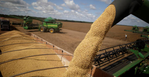 Placeholder - loading - Imagem da notícia Exportações do agronegócio do Brasil têm recorde para mês de abril de US$13,6 bi