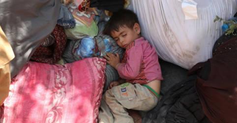 Placeholder - loading - Imagem da notícia Taliban controla 65% de Afeganistão após avanços súbitos, diz autoridade da UE