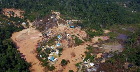 Placeholder - loading - Imagem da notícia Quase 30% do ouro exportado pelo Brasil pode ser ilegal, mostra estudo