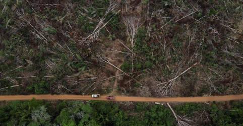 Placeholder - loading - Imagem da notícia Líderes indígenas querem nova meta para proteger Amazônia do desmatamento