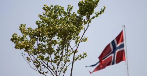Placeholder - loading - Imagem da notícia Indígenas pedem 'asilo' norueguês para árvore brasileira