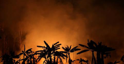 Placeholder - loading - Imagem da notícia Empresários fazem apelo para que Brasil assuma liderança em questões climáticas
