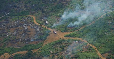 Placeholder - loading - Incêndios na Amazônia brasileira caem quase pela metade em setembro