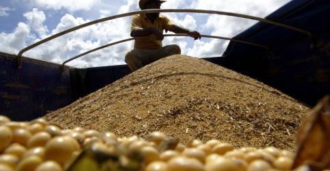 Placeholder - loading - Conab projeta recorde de 140,75 mi t de soja na nova safra do Brasil