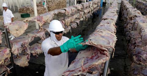 Placeholder - loading - Imagem da notícia Brasil sofre para liberar na China carne certificada antes de suspensão de exportações