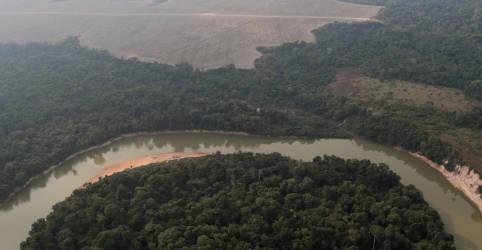 Placeholder - loading - Imagem da notícia Emissões de gases de efeito estufa do Brasil subiram 9,5% em 2020 com desmatamento, aponta estudo