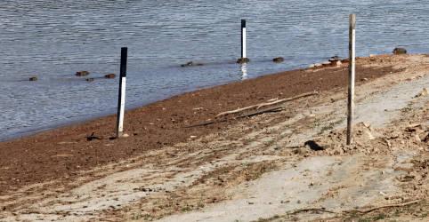 Placeholder - loading - Imagem da notícia ENFOQUE-Racionar água na crise hídrica gera dilemas: salvar peixes ou energia?