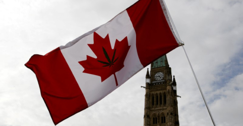 Placeholder - loading - Senado do Canadá aprova uso recreativo da maconha