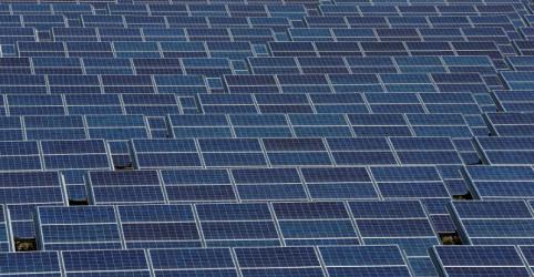 Petrobras e Total podem criar nova empresa para investir em energia solar e eólica