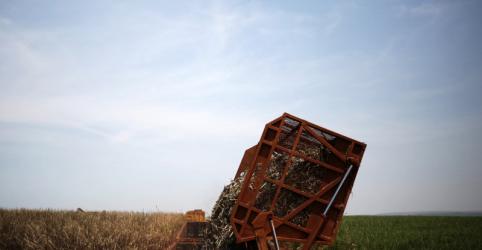Produção de açúcar cai 23,3% no centro-sul; etanol hidratado tem recorde quinzenal