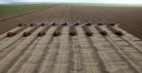 Placeholder - loading - Imagem da notícia Bancos veem maior demanda por crédito agrícola diante de incertezas sobre frete