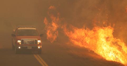 Placeholder - loading - Imagem da notícia Califórnia combate maior incêndio florestal de sua história
