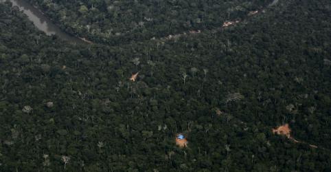 Placeholder - loading - Brasil reduz emissão de carbono por desmatamento na Amazônia e no Cerrado, diz governo