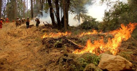 Placeholder - loading - Imagem da notícia Incêndio florestal agressivo ameaça milhares de casas em cidade do sul da Califórnia