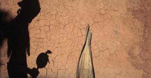 Placeholder - loading - Imagem da notícia Polícia do Maranhão investiga morte de líder indígena de tribo ameaçada por madeireiros