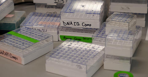 Placeholder - loading - Para famílias de vítimas do 11 de Setembro, novas técnicas de DNA reabrem feridas