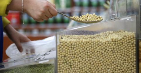 Placeholder - loading - Imagem da notícia Brasileiros almejam contrato futuro de soja diante de guerra comercial EUA-China