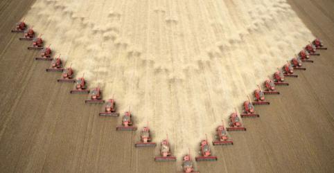 Placeholder - loading - Safra de soja do Brasil 17/18 soma recorde de 119,3 mi t; colheita de milho cai 17%