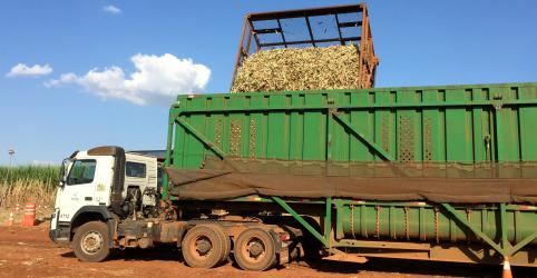 Placeholder - loading - Brasil e Austrália vão combater eventual subsídio da Índia à exportação de açúcar