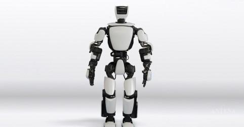 Placeholder - loading - Imagem da notícia Conheça robô da Toyota
