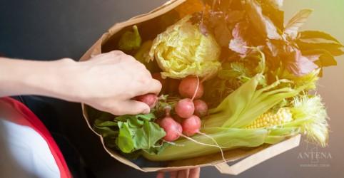 Conheça a dieta da saúde planetária