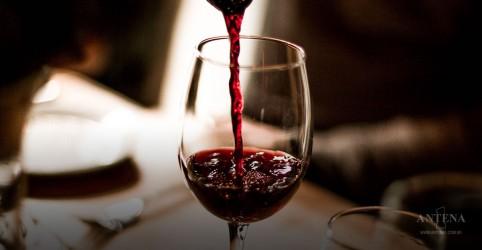 Consumir álcool moderadamente pode prevenir demências